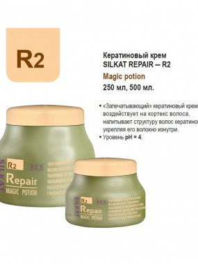 Bes Silkat Repair R2 Magic Potion