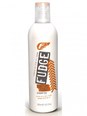 Fudge Torture Tonic Shampoo