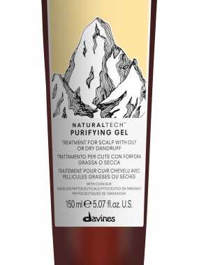 DAVINES NATURALTECH PURIFYING GEL